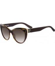 Karl Lagerfeld Senhoras kl900s óculos de tartaruga